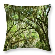 A Road To The Inside Just Outside Of Savannah Throw Pillow