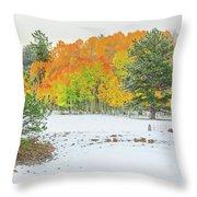 A Roadside Neve  Throw Pillow