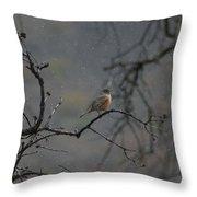 A Robin In Spring Snowfall  Throw Pillow