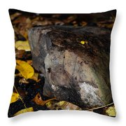 A Rock Amongst Decay Throw Pillow