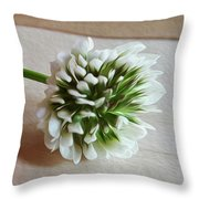 A Rock And A Soft Place Throw Pillow