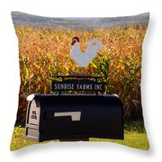 A Rooster Above A Mailbox 1 Throw Pillow