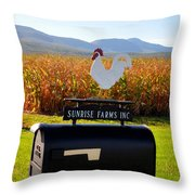 A Rooster Above A Mailbox 2 Throw Pillow