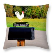 A Rooster Above A Mailbox 3 Throw Pillow
