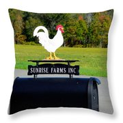 A Rooster Above A Mailbox 4 Throw Pillow