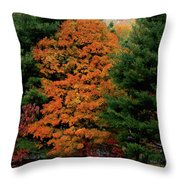 A Rose Between Two Thorns Throw Pillow by DigiArt Diaries by Vicky B Fuller
