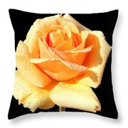 A Rose By Any Other Name Would Smell As Sweet Throw Pillow