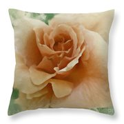 A Rose For Lady Mary Throw Pillow