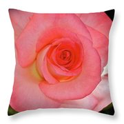 A Rose For Mary Throw Pillow