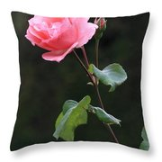 A Rose For Rodin Throw Pillow