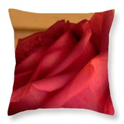 A Rose In Horizonal Throw Pillow