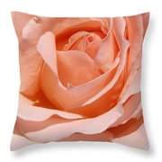 A Rose Is A Rose By Any  Name .... Throw Pillow