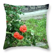 A Rose Is Down Throw Pillow