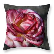 A Rose Of Different Shades Of Red Throw Pillow