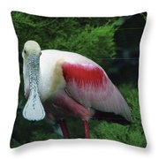 A Roseate Spoonbill Along The Gulf Throw Pillow