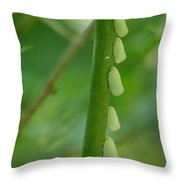 A Row Of Hoppers Throw Pillow