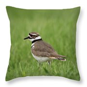 A Run Through The Grass Throw Pillow