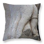 A Sacramento Hand Throw Pillow