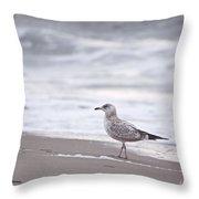 A Seagull At The Beach Throw Pillow