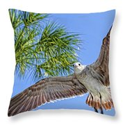 A Seagull Flyby Throw Pillow