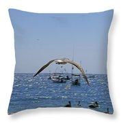 A Seagulll In-flight At Playa Manzanillo Throw Pillow