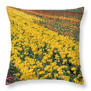 A Season For Everything Throw Pillow