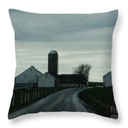 A Serene Evening Throw Pillow