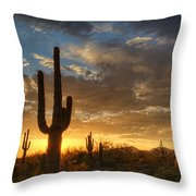 A Serene Sunset In The Sonoran Desert  Throw Pillow