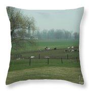 A Serene Vista Throw Pillow