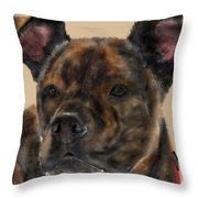 A Serious Pooch Throw Pillow