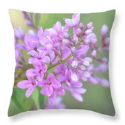 A Shade Of Purple, A Shade Of Spring Throw Pillow