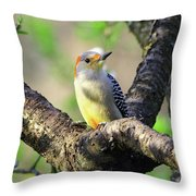 A Shady Woodland Bird Red-bellied Woodpecker Throw Pillow