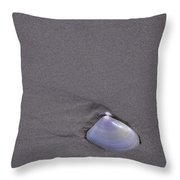 A Shell In The Sand Throw Pillow