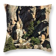 A Sheltered Place Throw Pillow