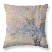 A Shimmering Light Throw Pillow