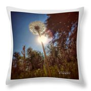 A Shiny Flower Day Throw Pillow