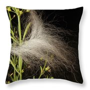A Siberian Husky Passed By Throw Pillow