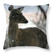 A Sideways Look Throw Pillow