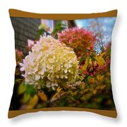 A Sign Of Contradiction Throw Pillow