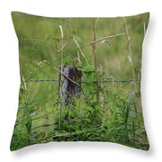 A Simple Post Throw Pillow by Rick Morgan