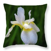 A Simple Purity Throw Pillow by Kendall McKernon