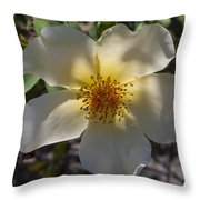 A Simple Rose Throw Pillow