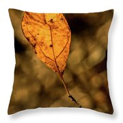 A Single Leaf In The Late Sun Throw Pillow