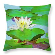 A Single Water Lily Blossom Throw Pillow
