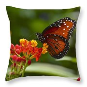 A Sip Of Milkweed Nectar Throw Pillow