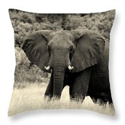 A Sixth Sense Throw Pillow