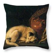 A Sleeping Dog With Terracotta Pot 1650 Throw Pillow