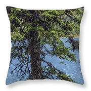 A Slice Of Pine Throw Pillow