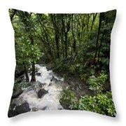 A Small River Flows Through A Dense Throw Pillow