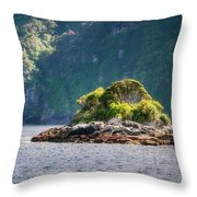 A Small Rocky Island At Doubtful Sound Throw Pillow